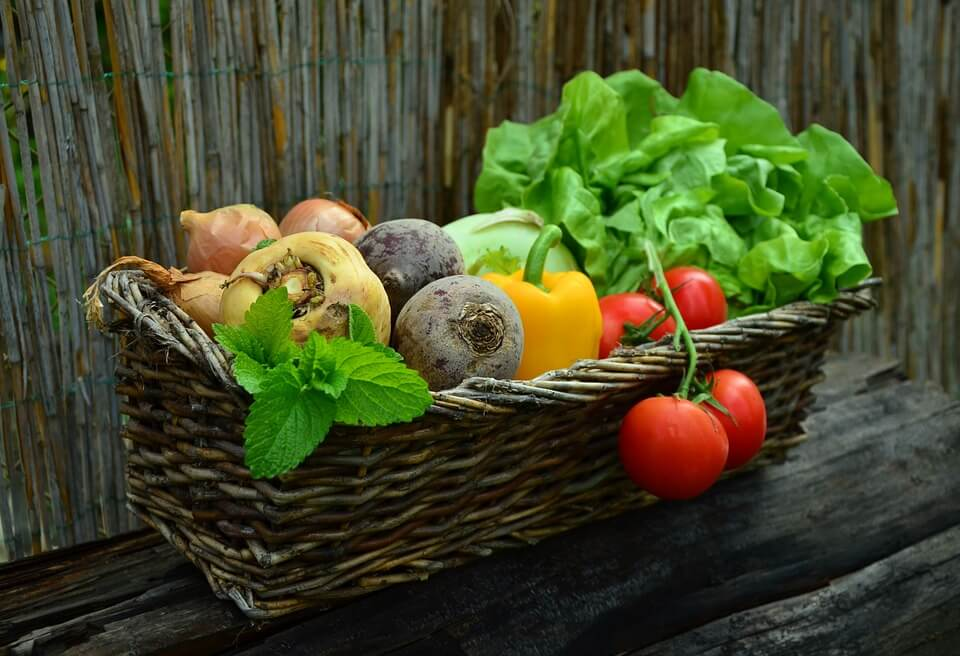 Vegetables:Picture from Pixabay